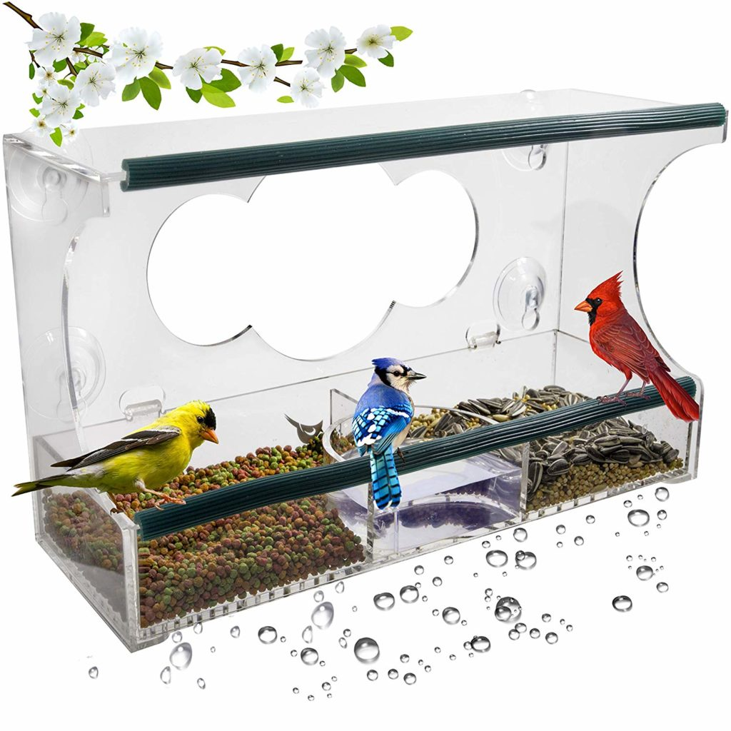 Bird Feeder with Strong Suction Cups